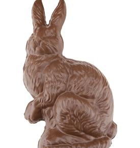 Large Cat Bunny